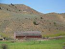 Barn on Hwy 26 -  Unity, Oregon by BettyEDuncan
