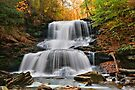 Autumn's Magical Spell On Tuscarora Falls by Gene Walls