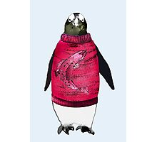 Penguin and his Favorite Sweater Photographic Print