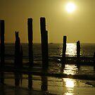 Port Willunga Beach, South Australia  by janfoster