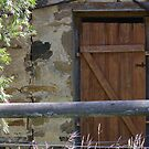 an old shed door by janfoster