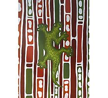 Australian Lizard Photographic Print