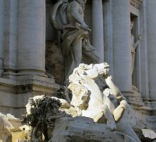 Trevi Fountain 3 by Darrell-photos