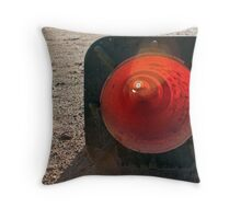 warned Throw Pillow
