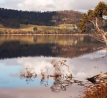 Huon Reflections III by jayneeldred