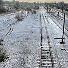 """""""Snow Bound"""" by Bradley Shawn  Rabon"""