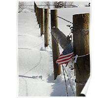 The Patriotic Fence Poster