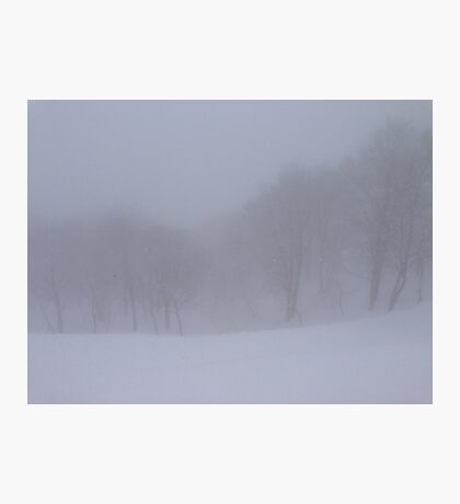 Snow Storm in the Woods Photographic Print