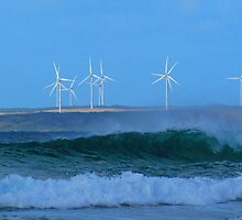 West Coast Wind Mills by Paul Campbell Psychology