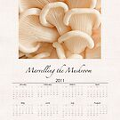 Marvelling the Mushroom 2011 Calendar by Marilyn Cornwell
