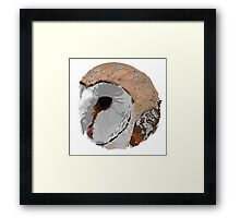 Barn Owl Circle Framed Print