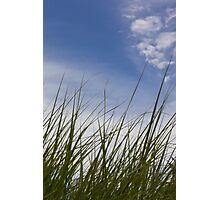 Grass, Clouds, Wind (Vertica) Photographic Print