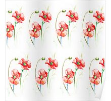 red watercolor poppies flowers Poster