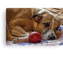 The Princess and her ball Canvas Print