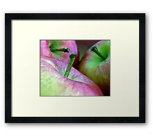 Three Apples a Day Framed Print