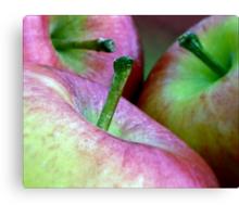 Three Apples a Day Canvas Print