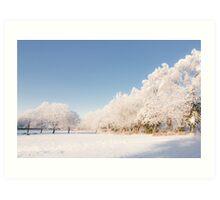 Belhaven Park winterscape Art Print