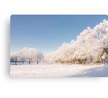 Belhaven Park winterscape Canvas Print