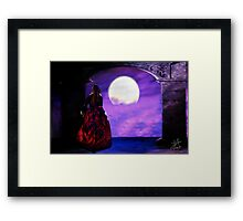 Moonlight Night Framed Print
