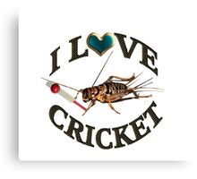 FOR THE LOVE OF THE SPORT & GAME OF CRICKET..FUN PICTURE OF A CRICKET PLAYING THE GAME CRICKET LOL...TEE SHIRTS,PILLOWS,TOTE BAGS,SCARF,CELL PHONE COVERS ECT.. Canvas Print