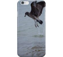 Pacific Gull Fledgling, Diving for food! iPhone Case/Skin