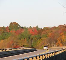 The Sun Is Up At the Double Bridges, Highlighting the Beauty of Fall, Again by Rusty Gentry