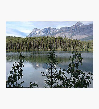 One Lake Too Many Photographic Print