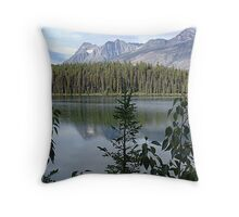 One Lake Too Many Throw Pillow