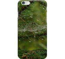Raindrops in spider web iPhone Case/Skin