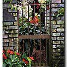 Secret Garden by John44