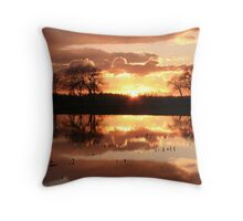 Last sunset of 2010 Throw Pillow