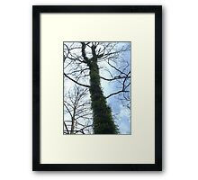 Re-Growth Framed Print
