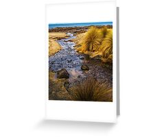 Bear Creek #2 Greeting Card
