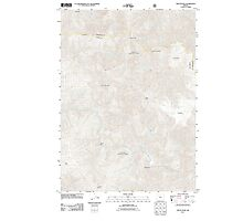USGS Topo Map Oregon Tincup Peak 20110809 TM Photographic Print