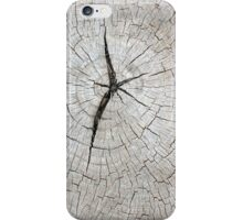 Top view of an old gray texture of a tree trunk iPhone Case/Skin