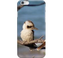 Blue Winged Kookaburras - Kemp Beach,  Qld. Australia. iPhone Case/Skin