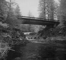 Bridge Over Dougan Falls by Isaac Daily