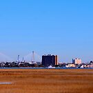 Charleston South Carolina seen from across the Salt Marsh by barnsis
