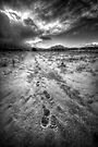 Brisk Walk by Bob Larson