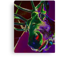 01-01-11 Wok-N-Roll's Reproachful Elk Canvas Print