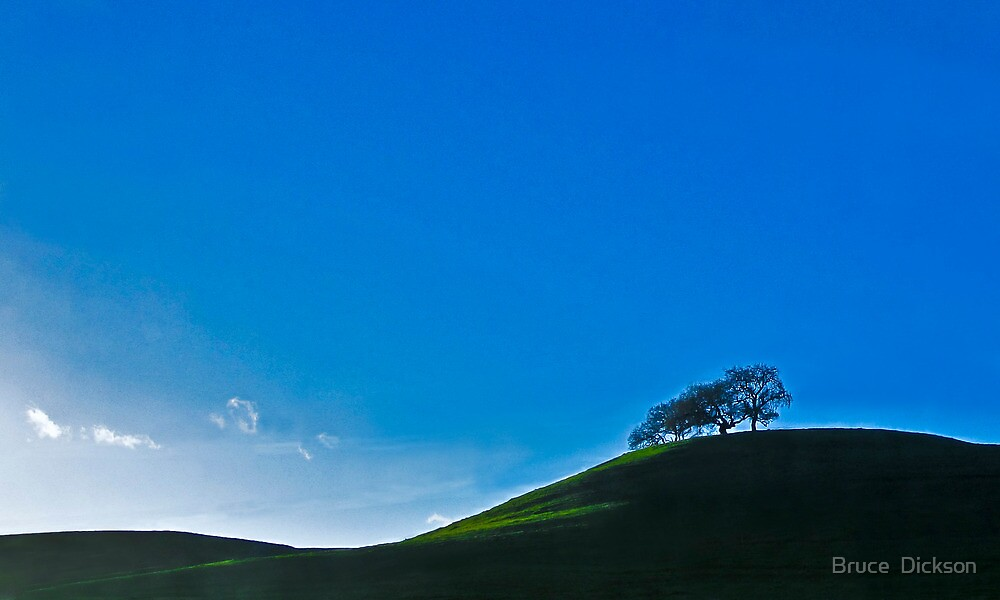 two tree hill by Bruce  Dickson