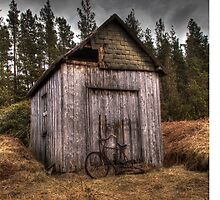 The Old Shed by Darren Brown
