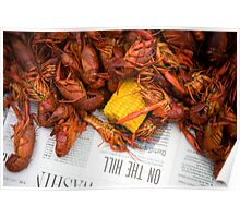 New Orleans Boiled Crawfish Poster