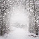 Castle in the snow by JBlaminsky