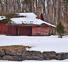 Deserted Farmhouse by Sally Kady