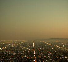 L.A. Skyline by StijnDaenens