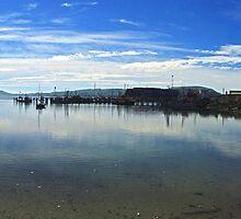 Careys Bay - New Zealand by Paul Gilbert