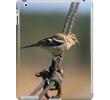 Chaffinch on a wire iPad Case/Skin