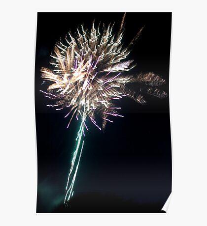 Fireworks puffball Poster