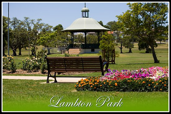 Lambton Park - Newcastle by reflector